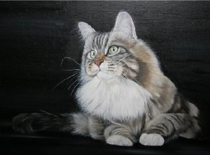 Furry beauty. Portrait on black background. Cat. Painting by Russian artist Maria Emelyanova