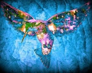 Sparkling Hummingbir