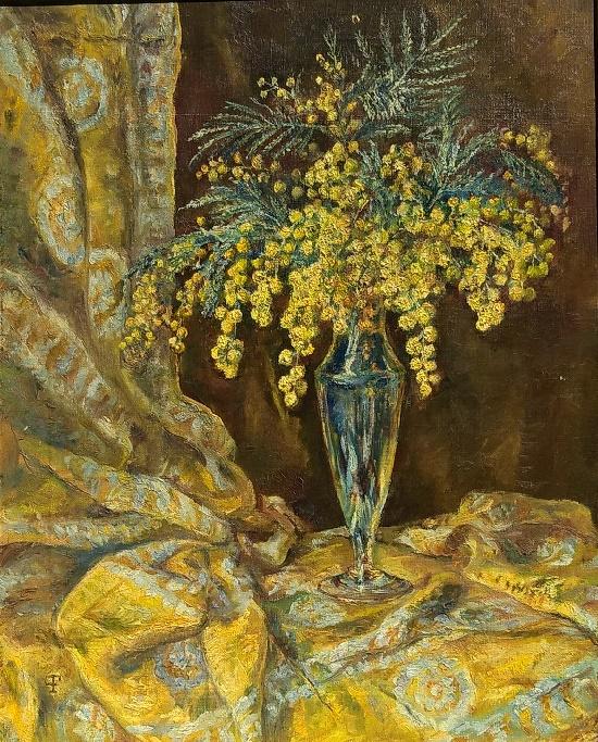 Kothny Flóra (1878-1954). Mimosa