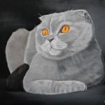 Painting cats Maria Emelyanova