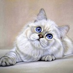 Blue-eyed cat. Painting by Moscow based artist Maria Emelyanova