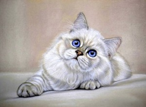 Blue-eyed cat. Painting by Moscow based artist Maria Emelyanova
