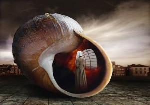 Seashell. Photo art by Belgian photographer Ben Goossens