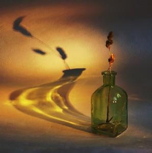 Shadows. Photo art by Belarusian photographer P. Laura