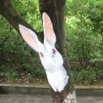 White hare painted on a tree trunk. Creative street art by unknown artists in the city of Guilin