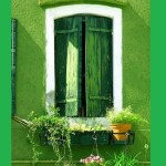 Green color inspiration