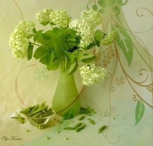 Still life. Green color inspiration