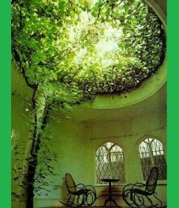 Amazing ceiling. Green color inspiration