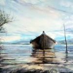 Boat and willows
