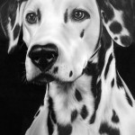 Pencil drawing by Jerry Winick