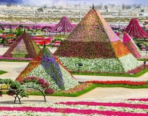 Pyramids of flowers