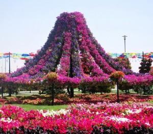 Beautiful flowering Garden