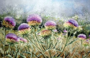 Flowers of Thistle