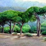 Turkish watercolorist Rukiye Garip