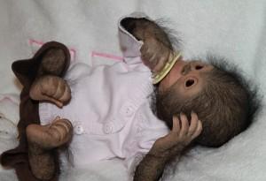 Cute baby monkey Chita Bindi made by Ekaterina Samgina