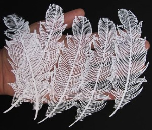 Exquisite work of art – Feathers cut out of paper