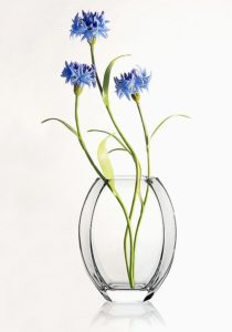 Cornflowers in a vase. Realistic Flowers hand made of polymer clay and cold porcelain