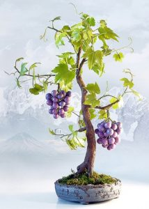 Grape composition for interior. Cold porcelain and Polymer clay Art by Natalia Nevrova