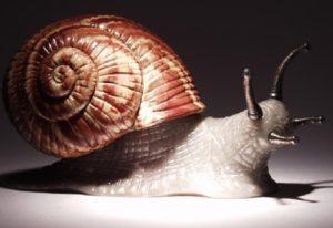 Snail. Jasper shell, snail of gray chalcedony, silver horns