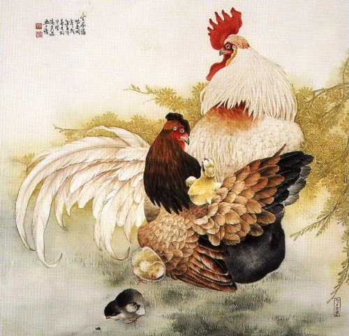 Rooster with hen in the garden represent the charms of rural life