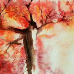 Autumn is beautiful