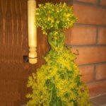 Dry herb doll