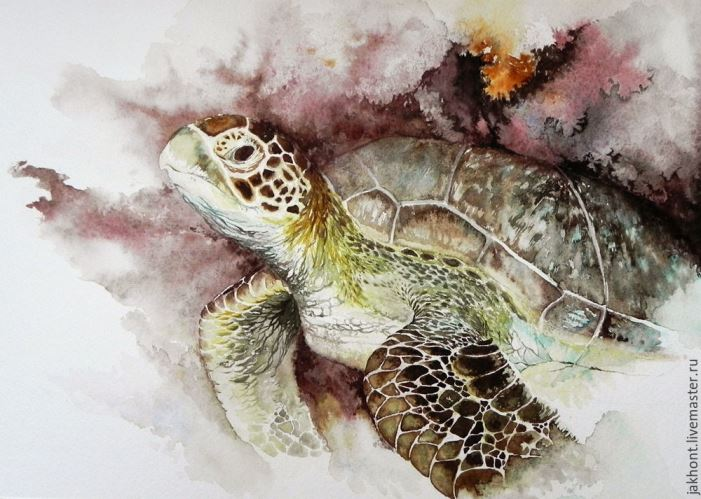 Turtle. Watercolors