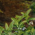 Blue forget-me-nots - a symbol of fidelity
