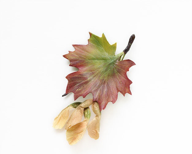 Maple leaf brooch. 11 cm