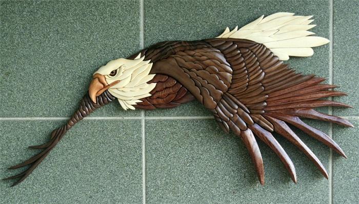 White headed eagle